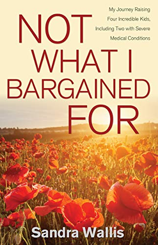 Not What I Bargained For by Sandra Wallis